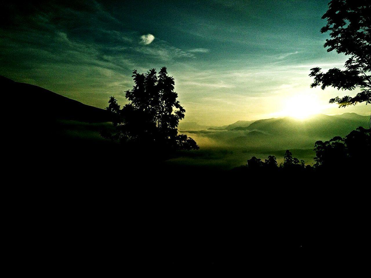 Beauty In Sunshine Mountain Day