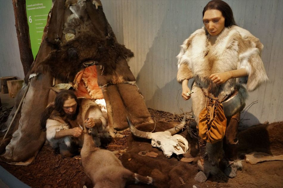 Neandertal Museum Adult Adults Only Ancient Civilization Day Early European People Indoors  Neandertaler People Period Costume Sitting Togetherness