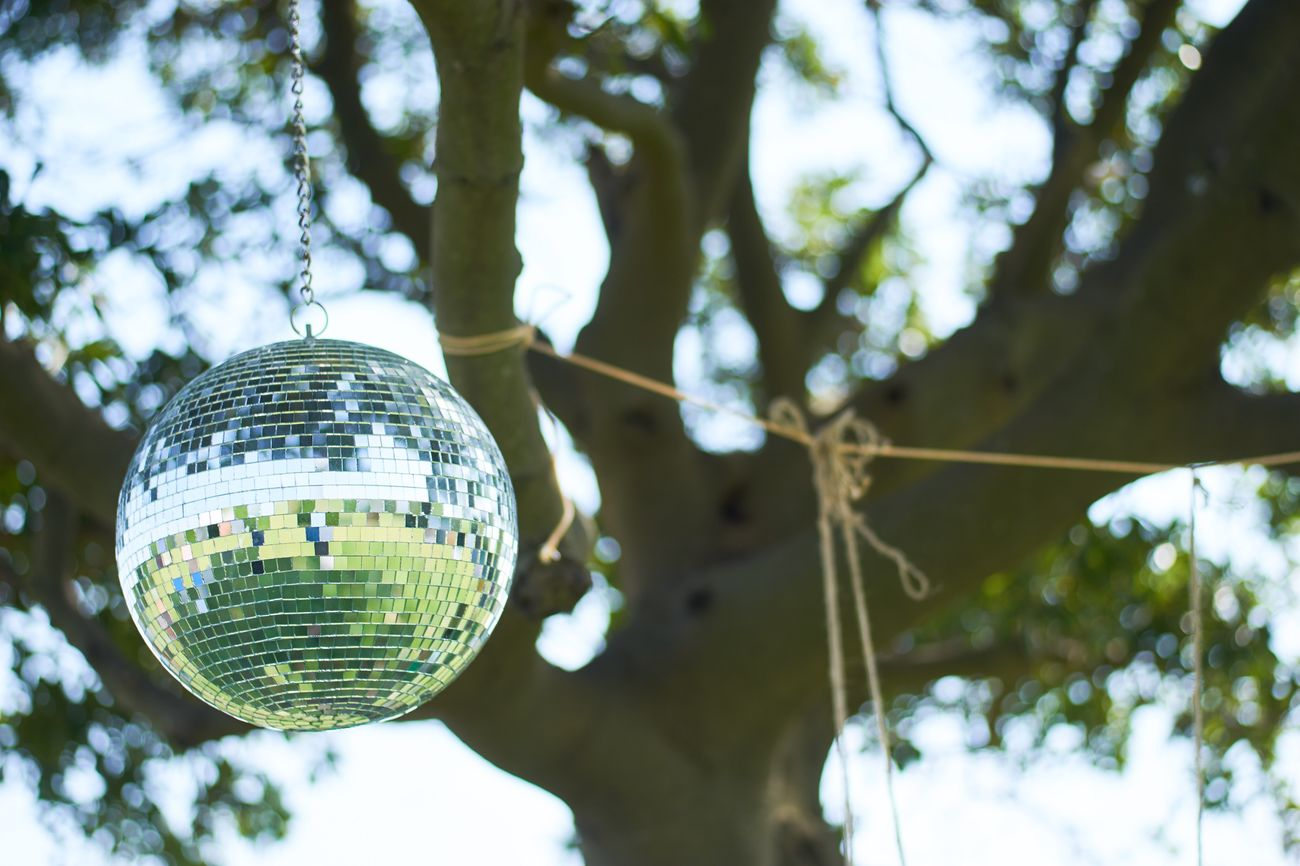 Hanging Disco Ball Low Angle View Tree Focus On Foreground No People Close-up Outdoors Day Mirror Ball Mirror Nature Reflection Tree Eye4photography  EyeEm Best Shots EyeEm Nature Lover