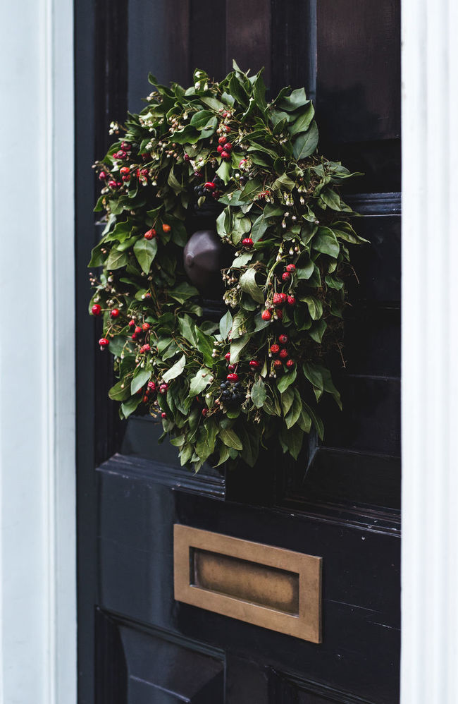 Berry Berrys Christmas Wreath Front Door Green Color Growth Holland Holly Berries Leaf Postbox Relaxing Wreath