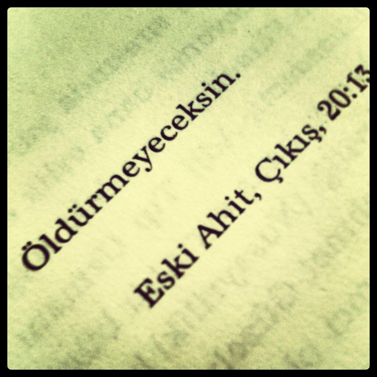 Kitap Ahmetümit Kavim