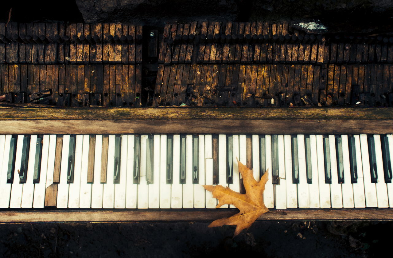 Art Day Iran Antique Pattern Life Lifestyles History Fall Fall Colors Hessam Music Nikonphotography No People Old Old-fashioned Outdoor Photography Outdoors Piano Piano Key Play Rain Sensual_woman Wood - Material TakeoverMusic