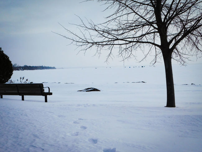 Beauty In Nature Lake Lake Nipissing Lakeshore Nature Northern Ontario Outdoors Tranquility Winter