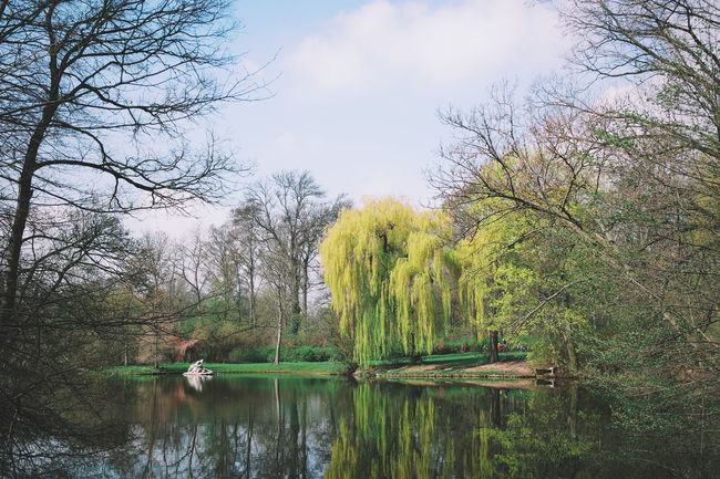 Nature Naturelovers Nature Photography Nature On Your Doorstep Showcase April Nature_collection Vscocam
