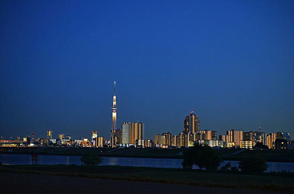 何やら、東京は大荒れの天気だったみたいすね。 出張から帰って来てびっくり! おかげで空気がとっても澄んでました。 Night View Tokyo Sky Tree Nature Trees
