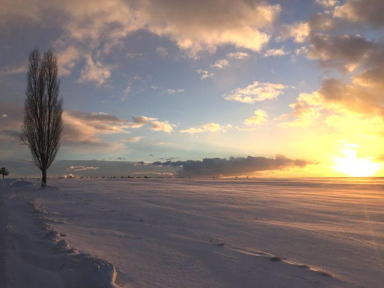 Sunset Winter Czech Republic Countryside