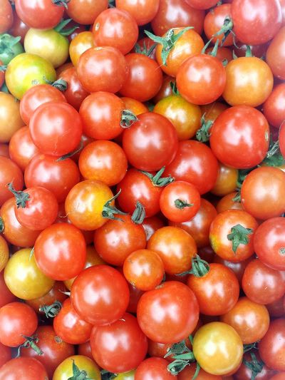 Freshness Food Healthy Eating Fruit Food And Drink Backgrounds Large Group Of Objects Full Frame No People Day Close-up Nature Red Hues Organic Food Juicy Tomato Tomatos Organic Growing Lifestyles Gardener Produce Beauty In Nature