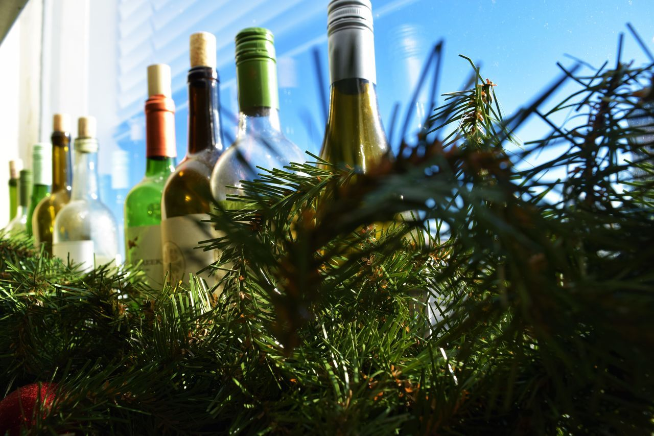 Bottle Decor Drinkiing Garland Decor Green Green Color Paris Wine Wine Bottles