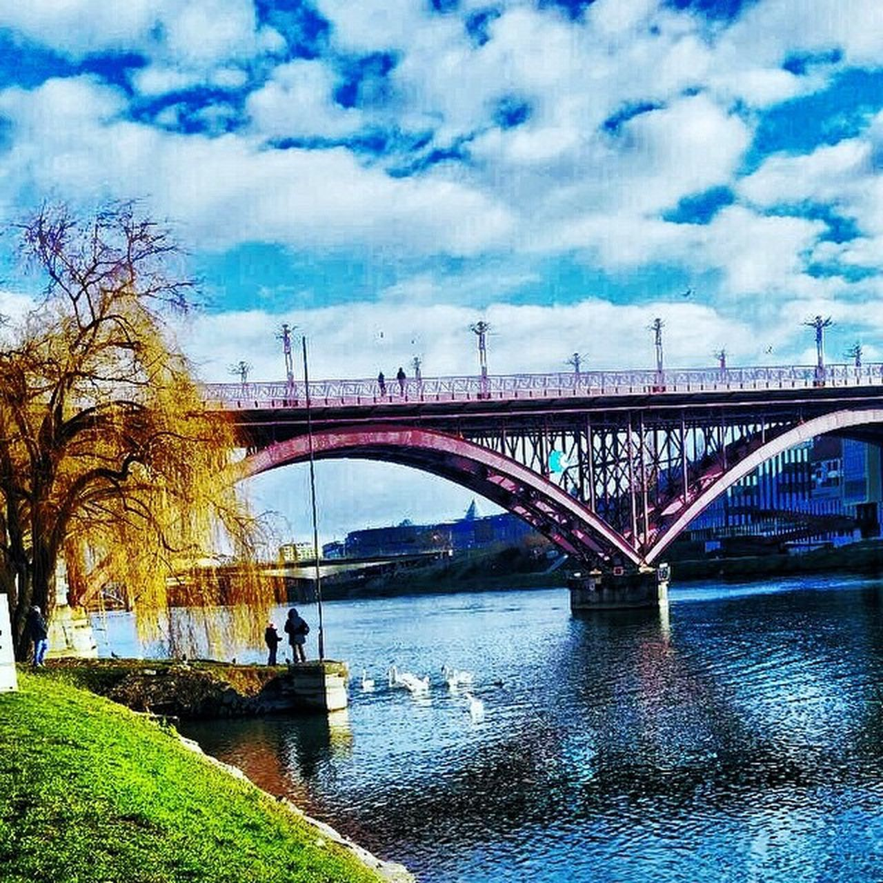 bridge - man made structure, connection, transportation, built structure, architecture, water, sky, river, cloud - sky, outdoors, day, nature, bridge, city, tree, no people