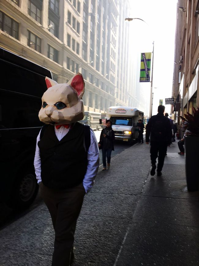Rabbit Comiccon