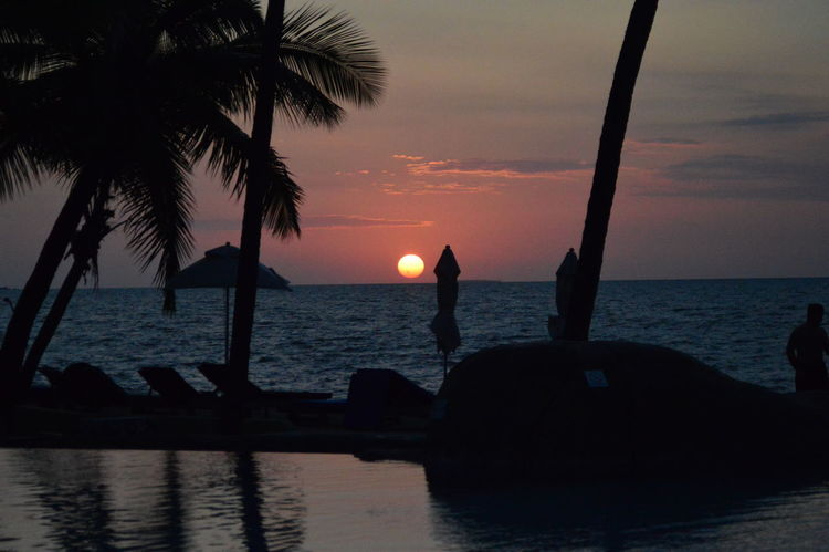 Double Tree Hotel By Hilton Beach Beauty In Nature Day Fiji Horizon Over Water Idyllic Nature Nautical Vessel No People Outdoors Palm Tree Scenics Sea Silhouette Sky Sun Sunset Tranquil Scene Tranquility Tree Water Perspectives On Nature