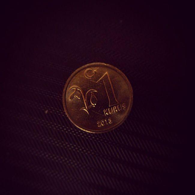 Money 1 Kurus