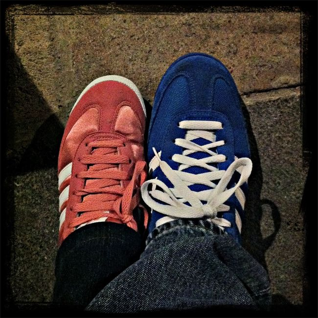 Pink & Blue Dragon's!!!