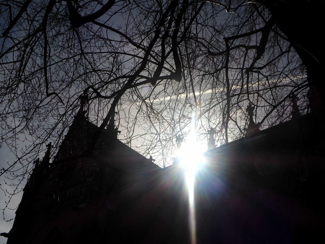 Lensflare Sunlight Silhouette Photography Lieblingsplätze😍 Citylife😄 For My Friends 😍😘🎁 Happy Weekend 😚😚😚😚 Zoom ♡ Morningsunlight Sunlight Looking Up😍 Architecture Built Structure Church In The Sun Silhouette Tranquility Love Lensflares Sunbeam Springtime