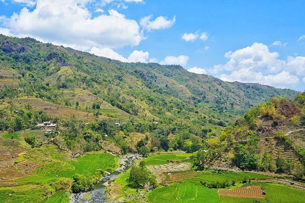 Rainy Season Selamat datang musim hujan, sedikit bercerita tentang negeri di atas awan, masih di sulawesi selatan tepatnya di kecamatan Tombolo Pao, Kabupaten Gowa (20km dari malino). Ditempat ini tanaman tumbuh dengan bebas, tanpa berharap kepada hujan. Ditempat ini, polusi enggan tuk sekedar singgah. Ditempat ini, angin berhembus dengan sejuk. Ditempat ini aku sejenak lupa untuk berfikir apalagi untuk sekedar mengingatnya lagi. @instanusantara Instanusantara Inub5188 Roadto4IN Instanusantaramakassar Jelajahsulsel Visitsouthsulawesi INDONESIA Instapinrang Instagowa Instamakassar Travel Landscape Natgeoindonedia Sonynex Ukmfotounhas Sastragagal Hipasnap Hipaae