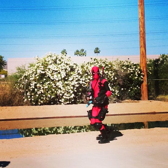 Deadpool at the 5k run/walk benefiting Voices for CASA