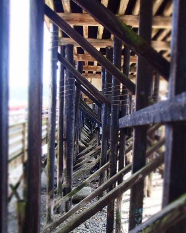 Under the pier at Gibsons - Sunshine Coast Explorebc Sunshinecoast Gibsons Summer Pier Summer Travelgram Wanderlust Beach Explore Harbour Hidden