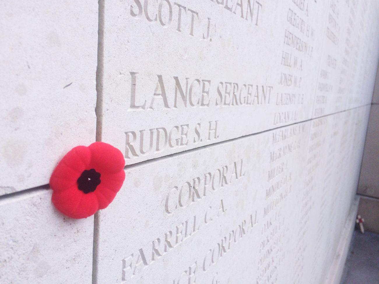 Flower Red Ww1 WO1 Names Soldiers Belgium Belgique
