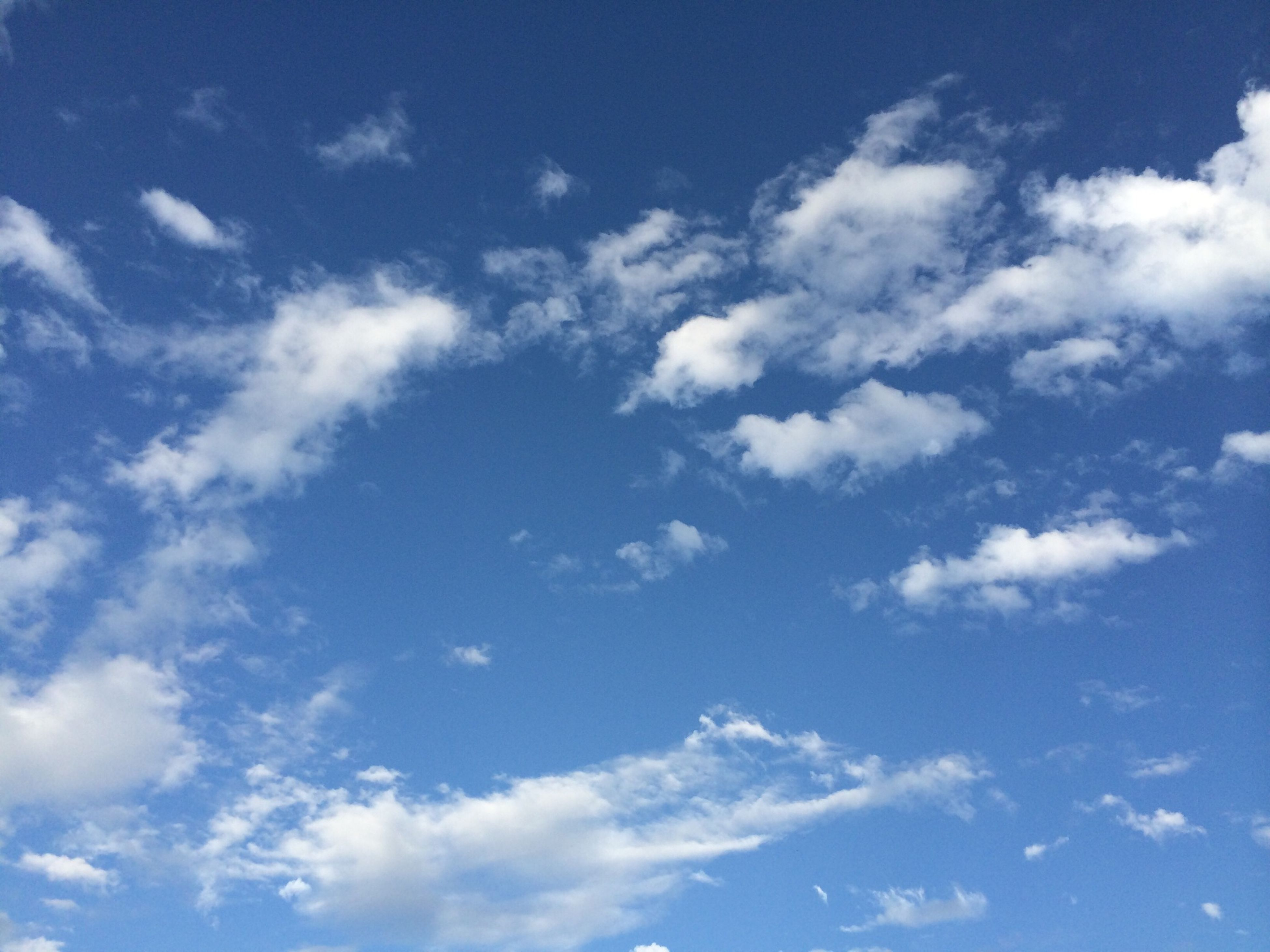 low angle view, blue, sky, sky only, beauty in nature, cloud - sky, tranquility, nature, scenics, white color, tranquil scene, backgrounds, cloud, cloudscape, cloudy, day, full frame, idyllic, white, outdoors