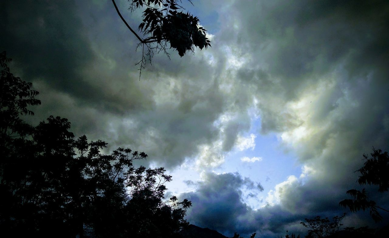 tree, sky, low angle view, cloud - sky, beauty in nature, nature, weather, no people, silhouette, scenics, outdoors, tranquil scene, tranquility, day, growth, storm cloud, branch