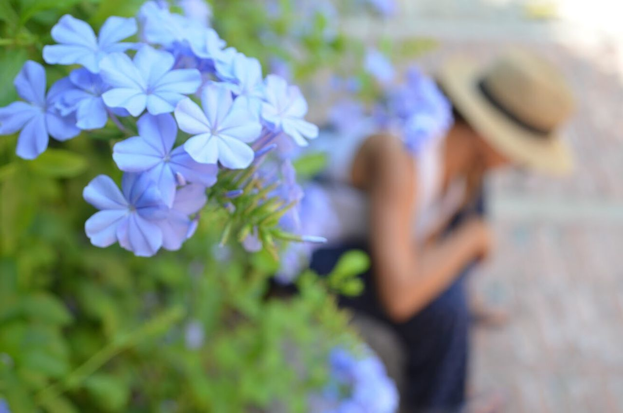 Flower Growth Focus On Foreground Real People Nature Outdoors Plant Beauty In Nature Women Day Fragility Men Close-up Freshness People Freshness Blooming Nature Photography EyeEm Nature Lover Sunlight Eye4photography  EyeEm Gallery Nature Flowers Nature_collection