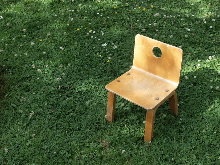 Chair Daisies KidsChair Beauty In Nature Close-up Day Field Grass Grassland Green Color Growth High Angle View Nature No People Outdoors Park - Man Made Space Seat