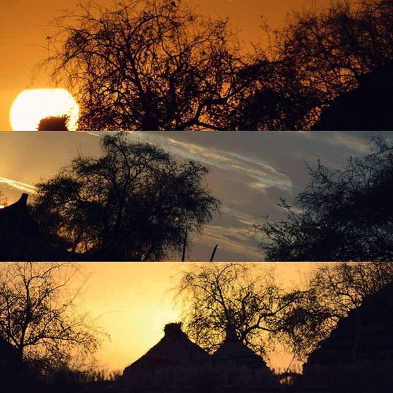 بلدي_ياحبوب ابداع تصويري  Dark_captures My_Photography pretty shadow sunset 🌅