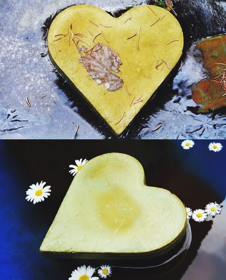 Two pictures of same motive in different time of the year Heart ❤ Nikon Photography Winter Summer Hot And Cold No People Nature Walking Around Outdoors Outside Photography Neighbors Yard Just Me And My Camera Relaxing Day Happiness