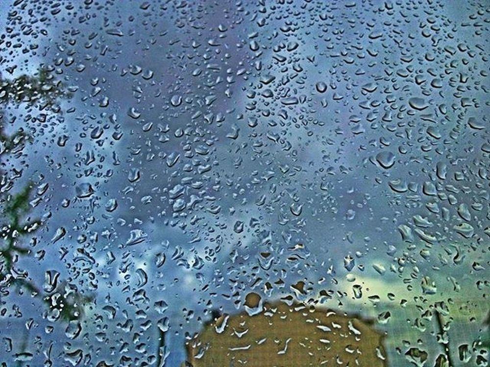 Yağmur sonrası miss gibi toprak kokusu 😊 miss 😍 . .. Yağmur Sonrası Baharyagmuru Gokgurultusu Pekseverim Yağmurdamlaları Geriyekalan Miss RainyDay Photograph Lookoftheday Photooftheday Photographer Hdr_pics Hdr_lovers Vsphoto Vsturkey Instagram Turkistagram Rain Fotografia Fotografheryerde Fotoğrafaşkına Toprakkokusu