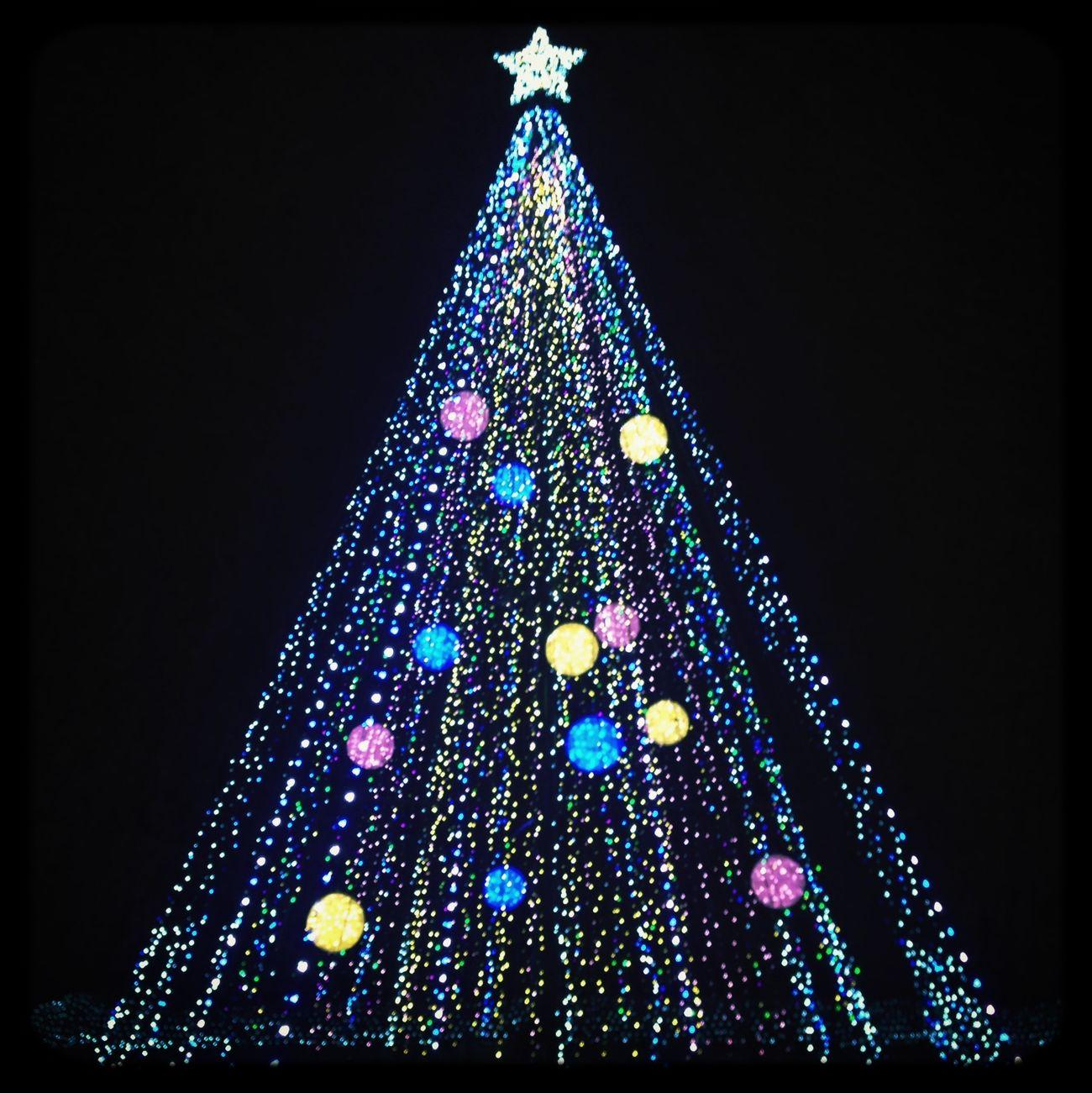 Merry Christmas! Colorful Japan