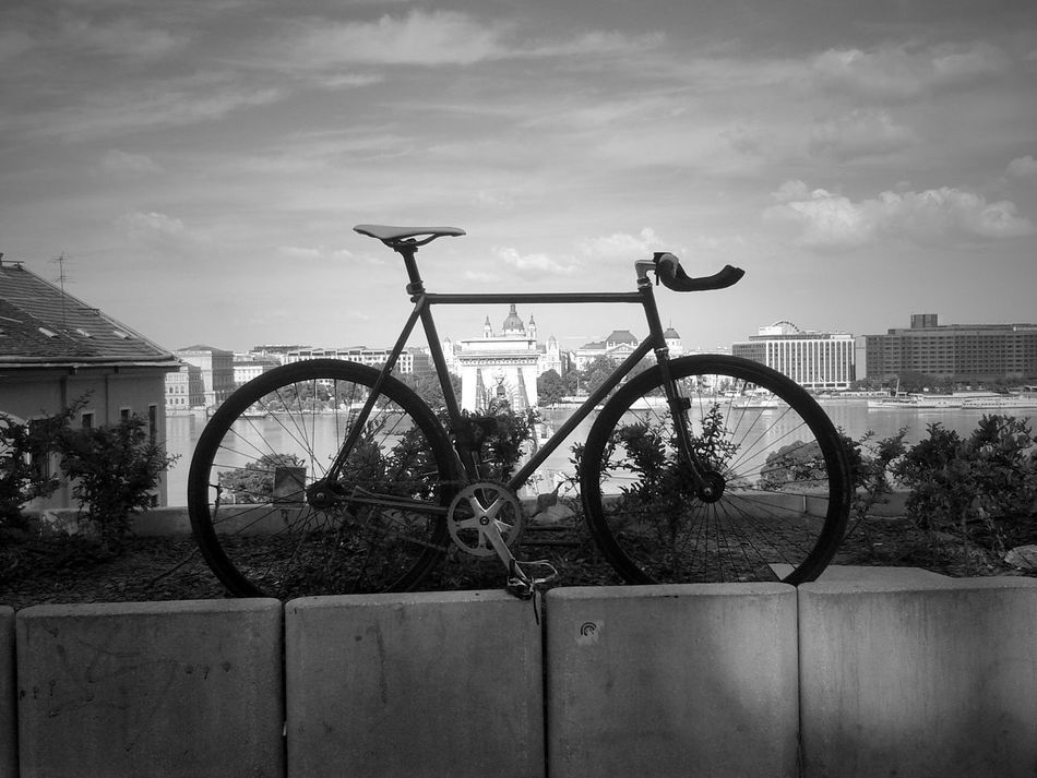 Blackandwhite Fixed Gear Cityscape Bnw_friday_challenge
