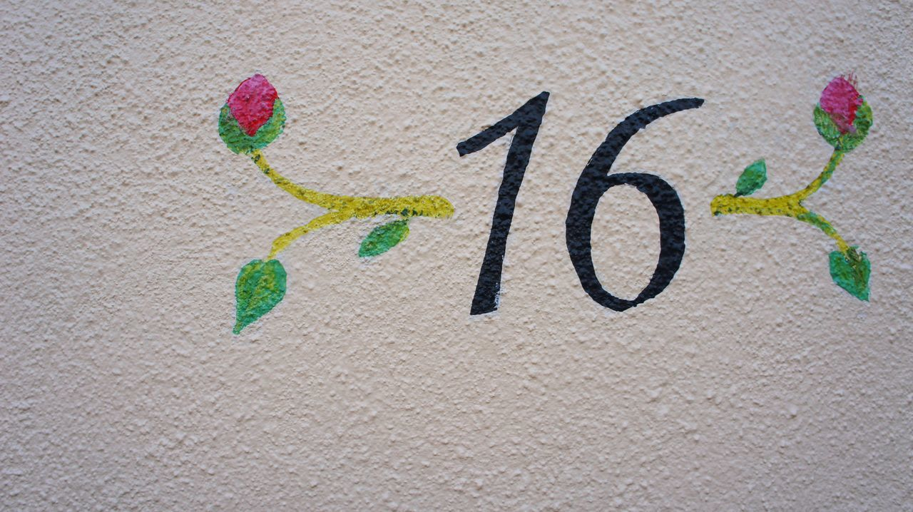 No.16 16 Art Art, Drawing, Creativity Close-up Creative Ideas Design Flowery Ideas Indoors  Number Numbers Painting Painting On The Wall Room Number.... Simplicity