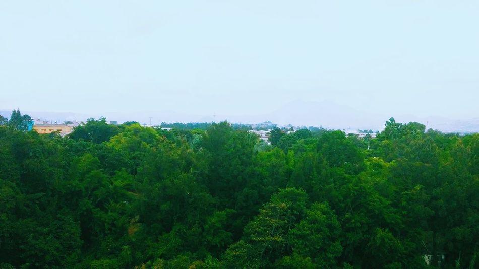 VSCO Vscocam Amazing View Guatemala Nature🌲🌳🍂