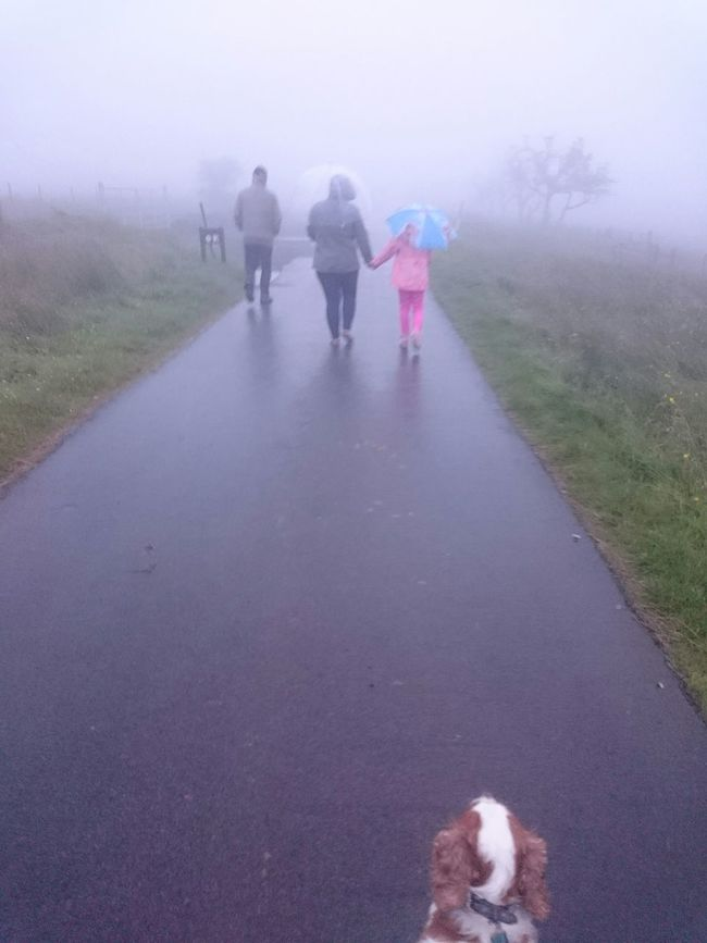 EyeEm Nature Lover Foggy Night Walking Blackmountain Northern Ireland EyeEm Gallery Ireland🍀 My Feet Hurt