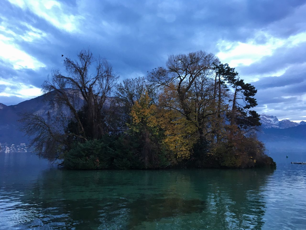 Beautiful French lake at the end of Autumn. I love the colours on this picture right before sun set. Tree Nature Sky Beauty In Nature Water Waterfront Tranquility Scenics No People Tranquil Scene Outdoors Lake Cloud - Sky Day Colours Of Nature Beautiful