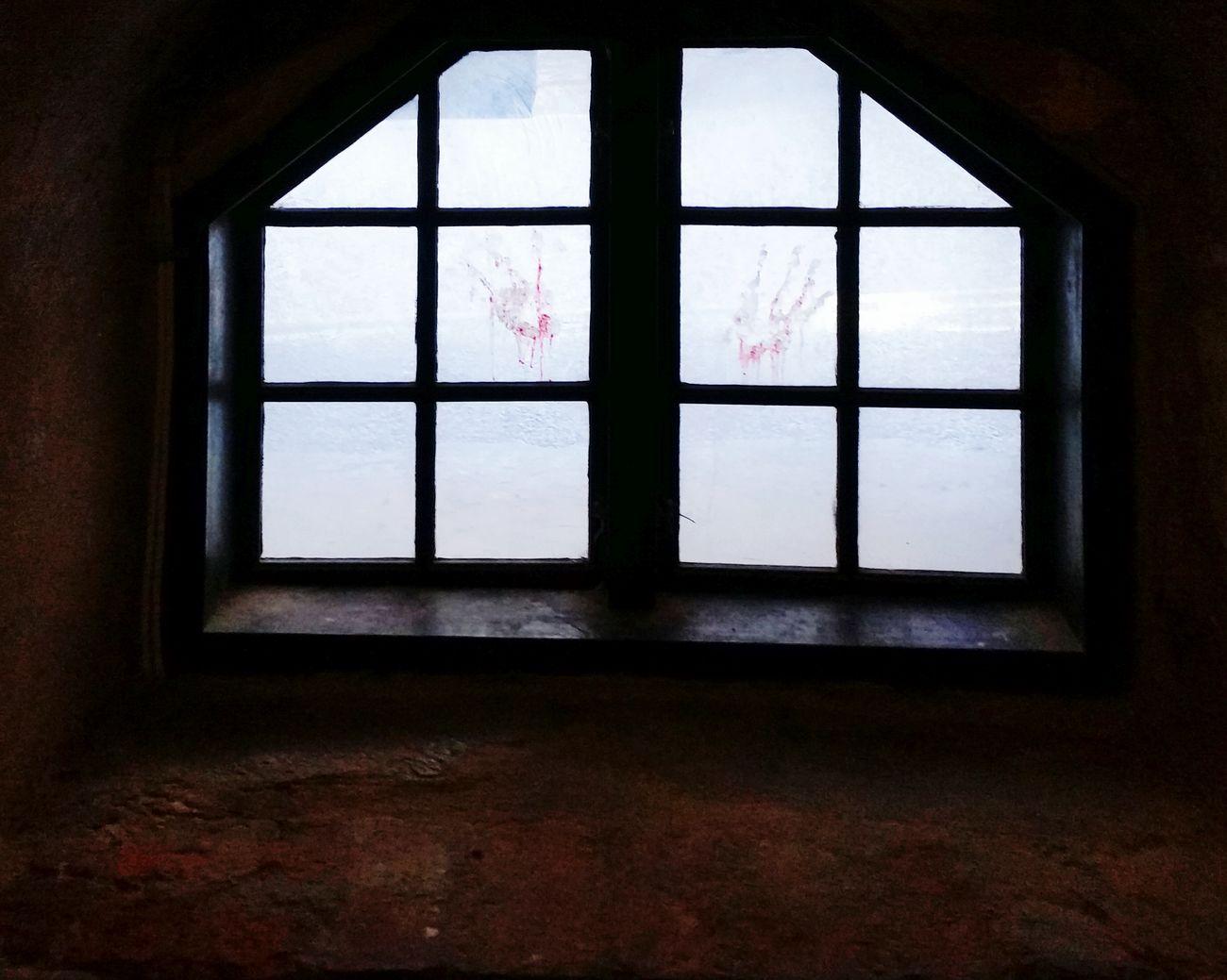 Göteborg Sweden Old Castle Bloodprint Hystory Window Inside Things
