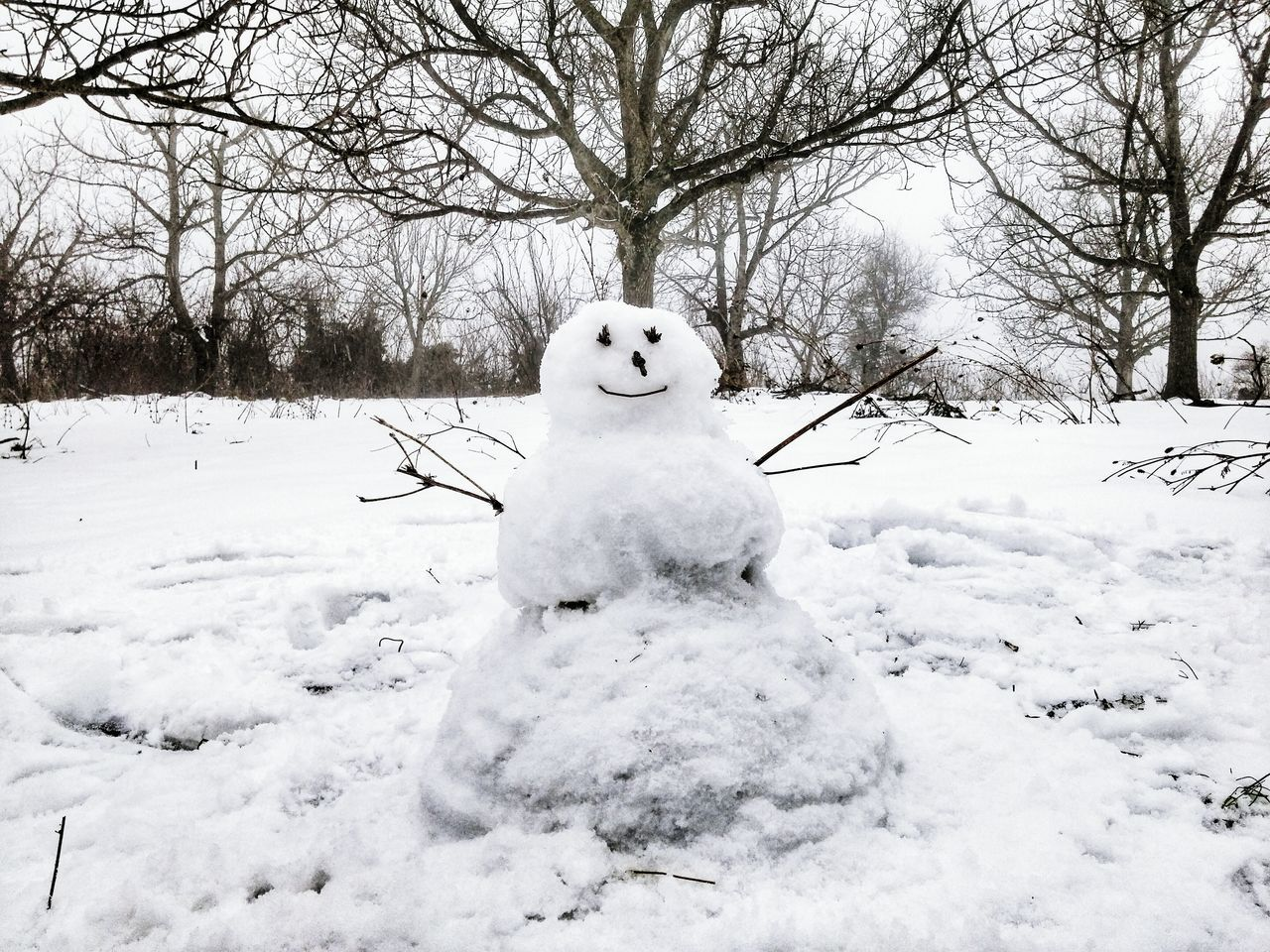 Beautiful stock photos of snowman, Art, Art And Craft, Bare Tree, Beauty In Nature