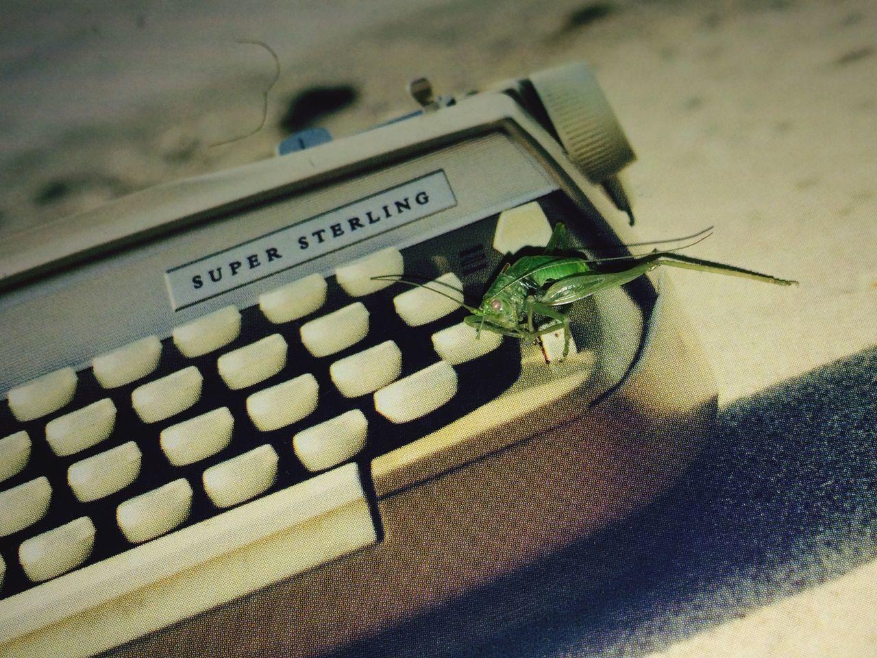 Freund von mir auf Schreibmaschine - tot.