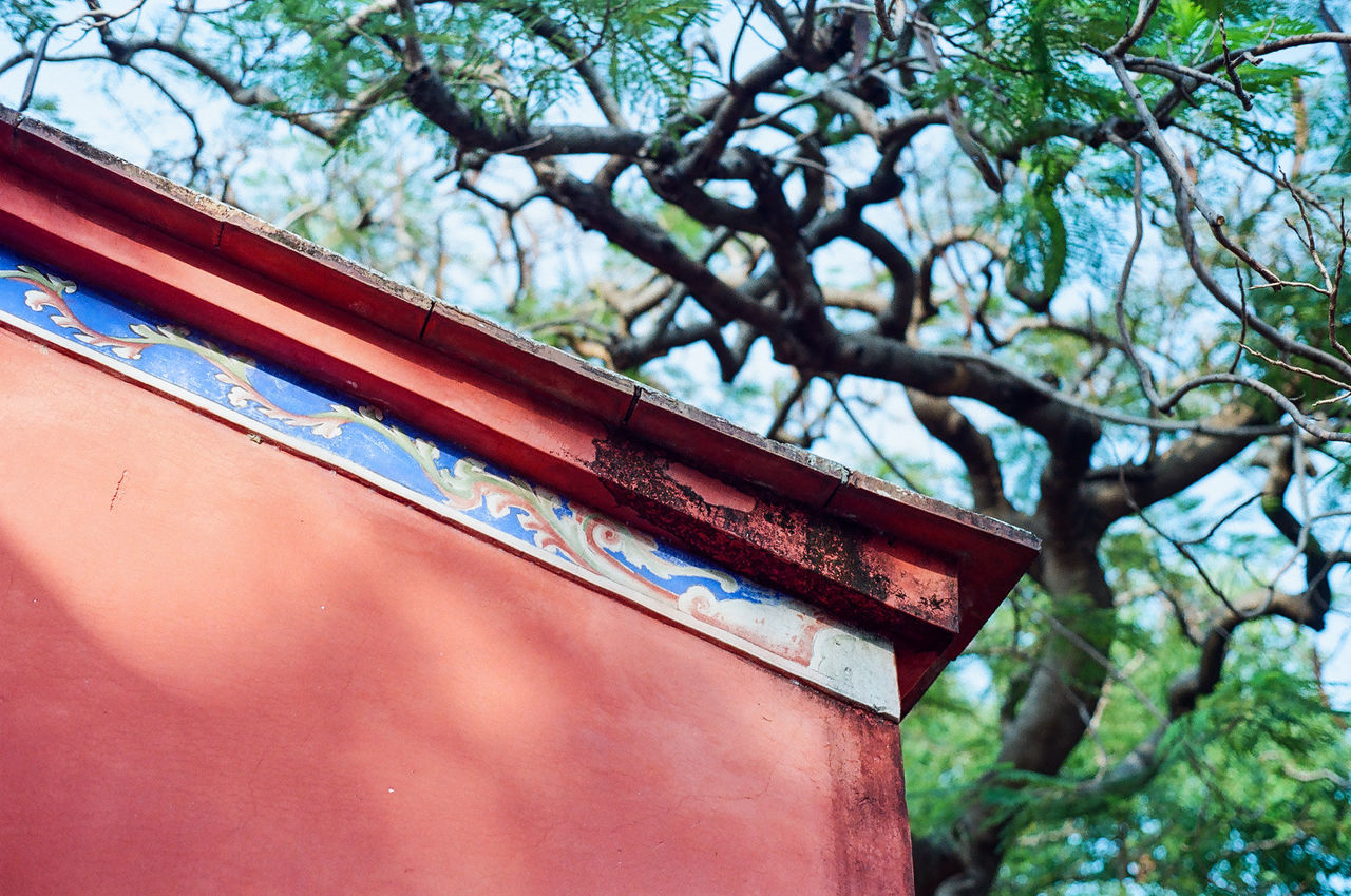 Roof of Confucius Temple Architecture Architecture Architecture_collection Branch Built Structure Confucius Temple Cultures Day EyeEm Best Shots EyeEm Gallery EyeEmBestPics Historical Building Low Angle View No People Outdoors Shadow Sky Sunnyday Sunset Tourist Attraction  Tree