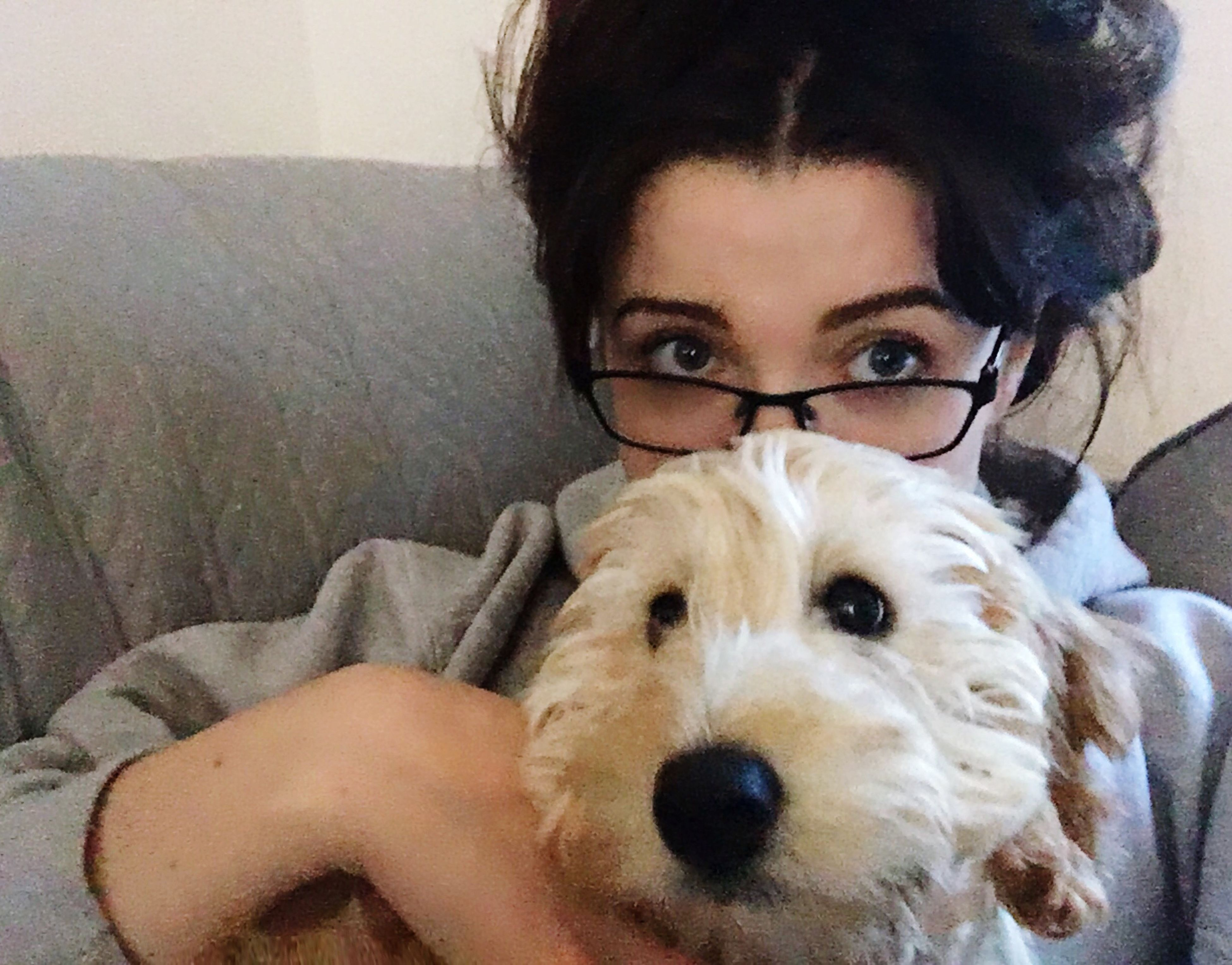 looking at camera, dog, young adult, pets, one animal, portrait, animal themes, real people, young women, mammal, one person, domestic animals, eyeglasses, indoors, front view, home interior, leisure activity, lifestyles, relaxation, sitting, day, close-up