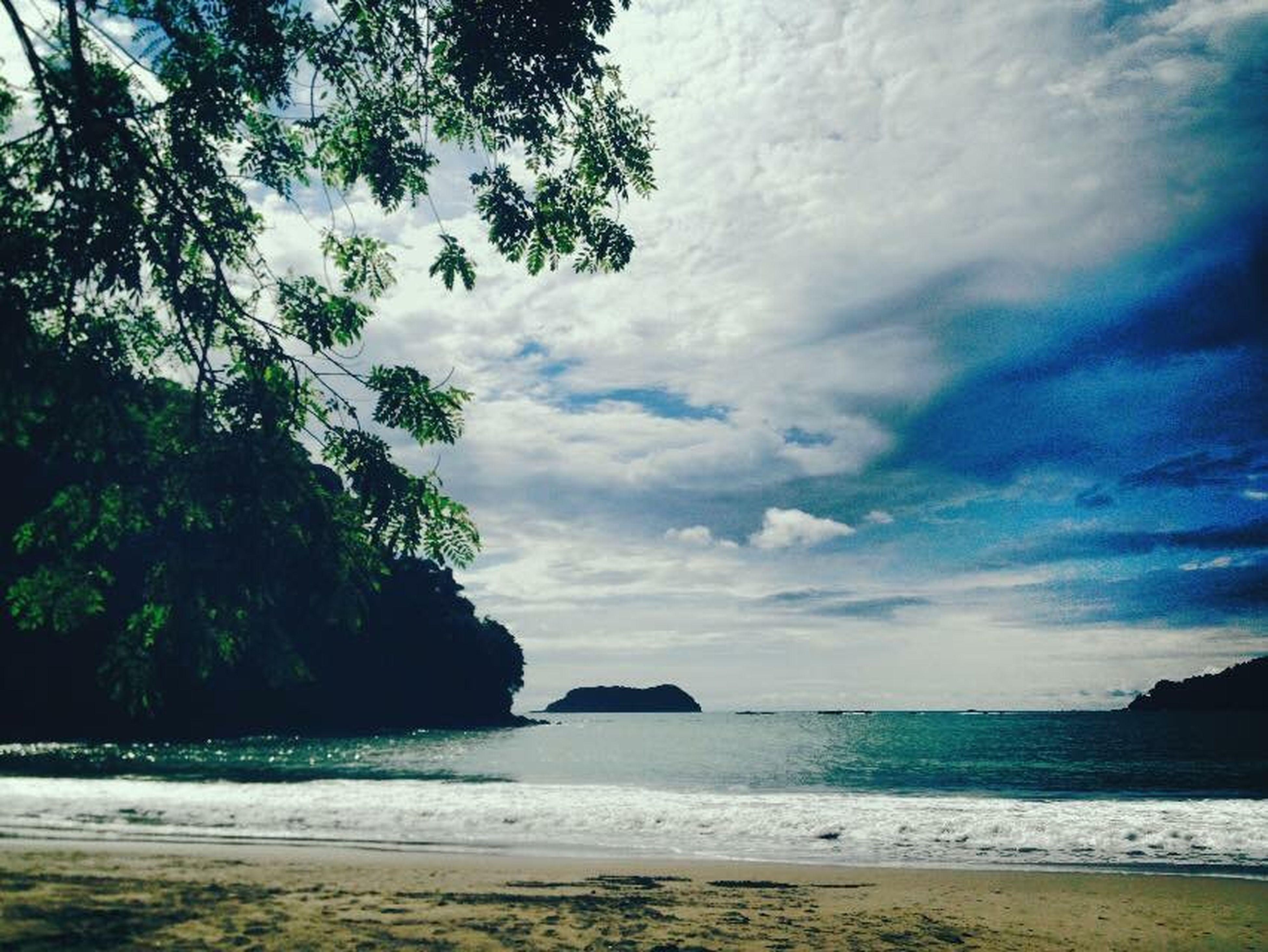 sea, water, sky, beach, tranquil scene, scenics, tranquility, horizon over water, beauty in nature, shore, cloud - sky, tree, nature, cloud, idyllic, cloudy, sand, coastline, outdoors, non-urban scene