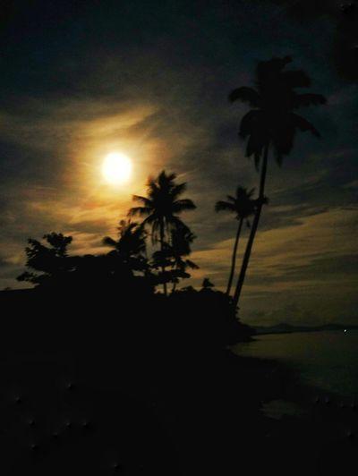 Full Moon EyeEm Indonesia EyeEmNewHere EyeEmNewHere Palm Tree Tree Silhouette Sunset Scenics No People Cloud - Sky Night Nature Beauty In Nature Sea