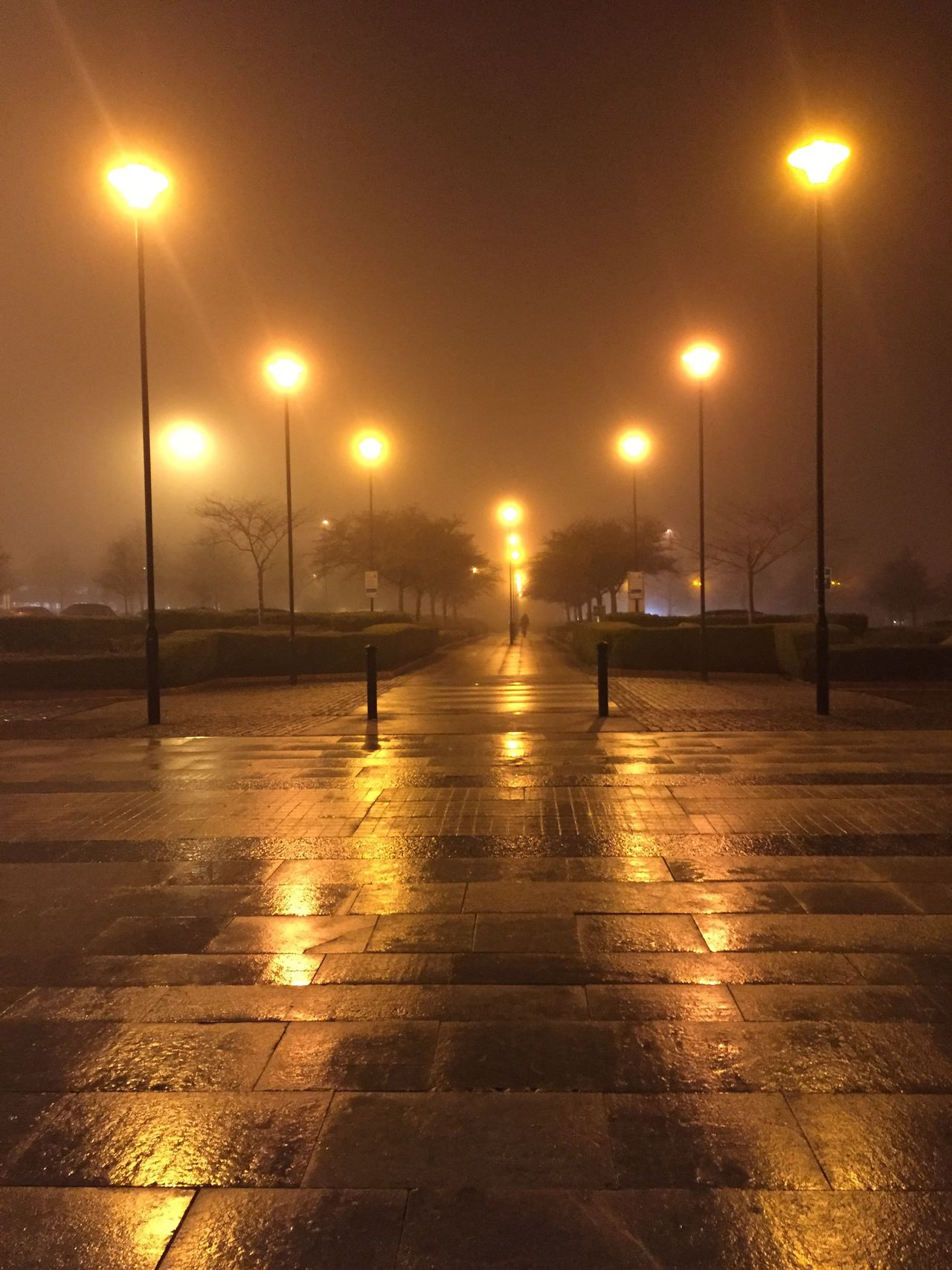 Foggy day Street Light Illuminated Night Reflection Lighting Equipment Wet Real People Outdoors Sky Nature Water One Person Architecture People Fog Foggy Foggy Night Pathway Dark And Foggy IPhoneography Nofilter EyeEm Best Shots Winter Cold Temperature Streetphotography