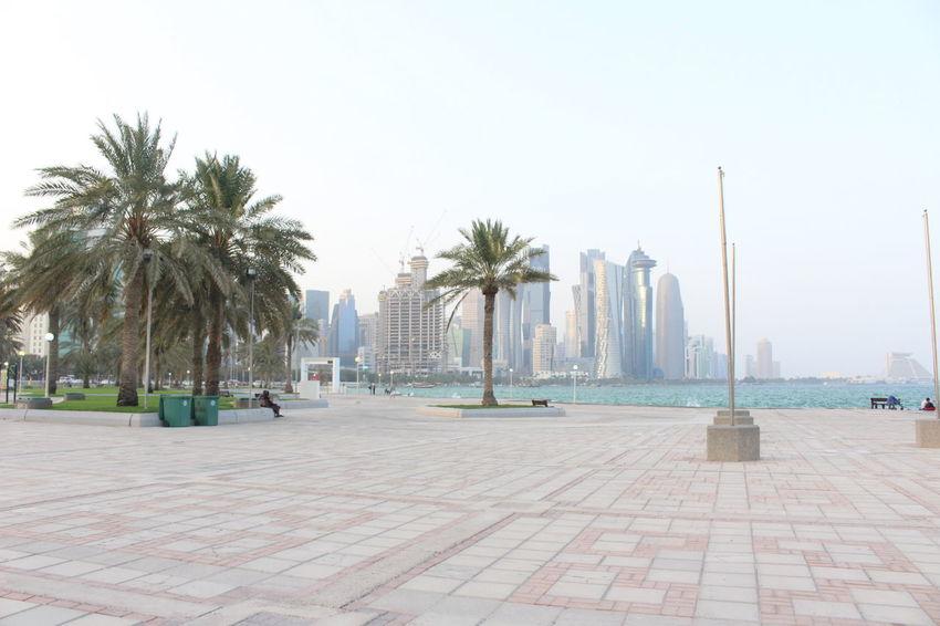 Dohaqatar Qatar2016 CORNICHE DOHA Landscape Travel Destinations Outdoors Beach Tree Sea Palm Tree City Mydohastory IloveQatar