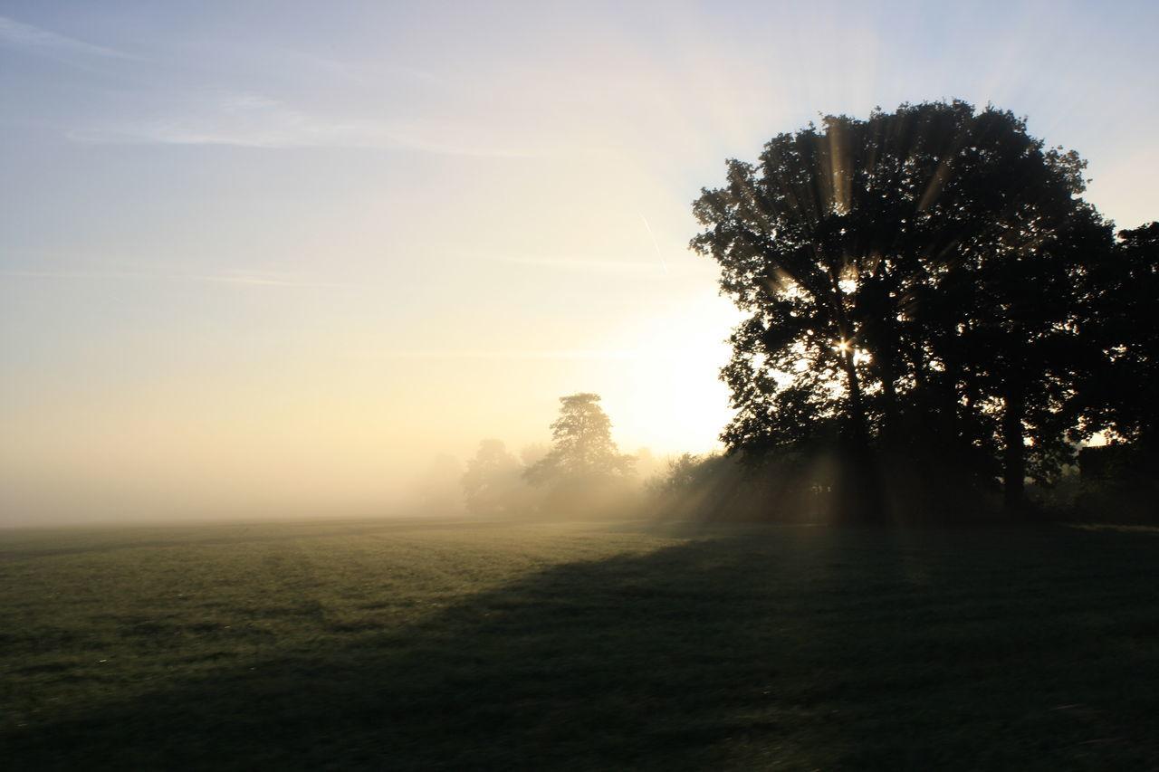 Beautiful stock photos of sunrise, Beginnings, Copy Space, Hope, Morning