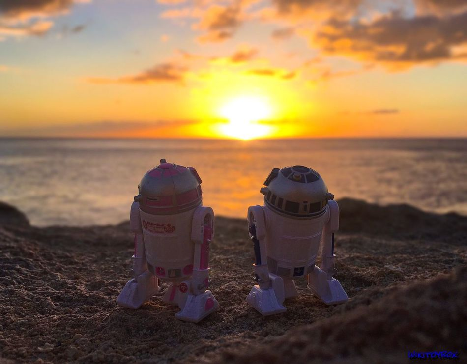 """""""A Single Chance is a Galaxy of Hope"""" -Clone Wars S1E18 ☄ #Maythe4thBewithYou Everyone! Starwars MayThe4thBeWithYou MayTheFourthBeWithYou R2D2 R2KT Disney Hawaii Oahu Sunset Toyphotography"""