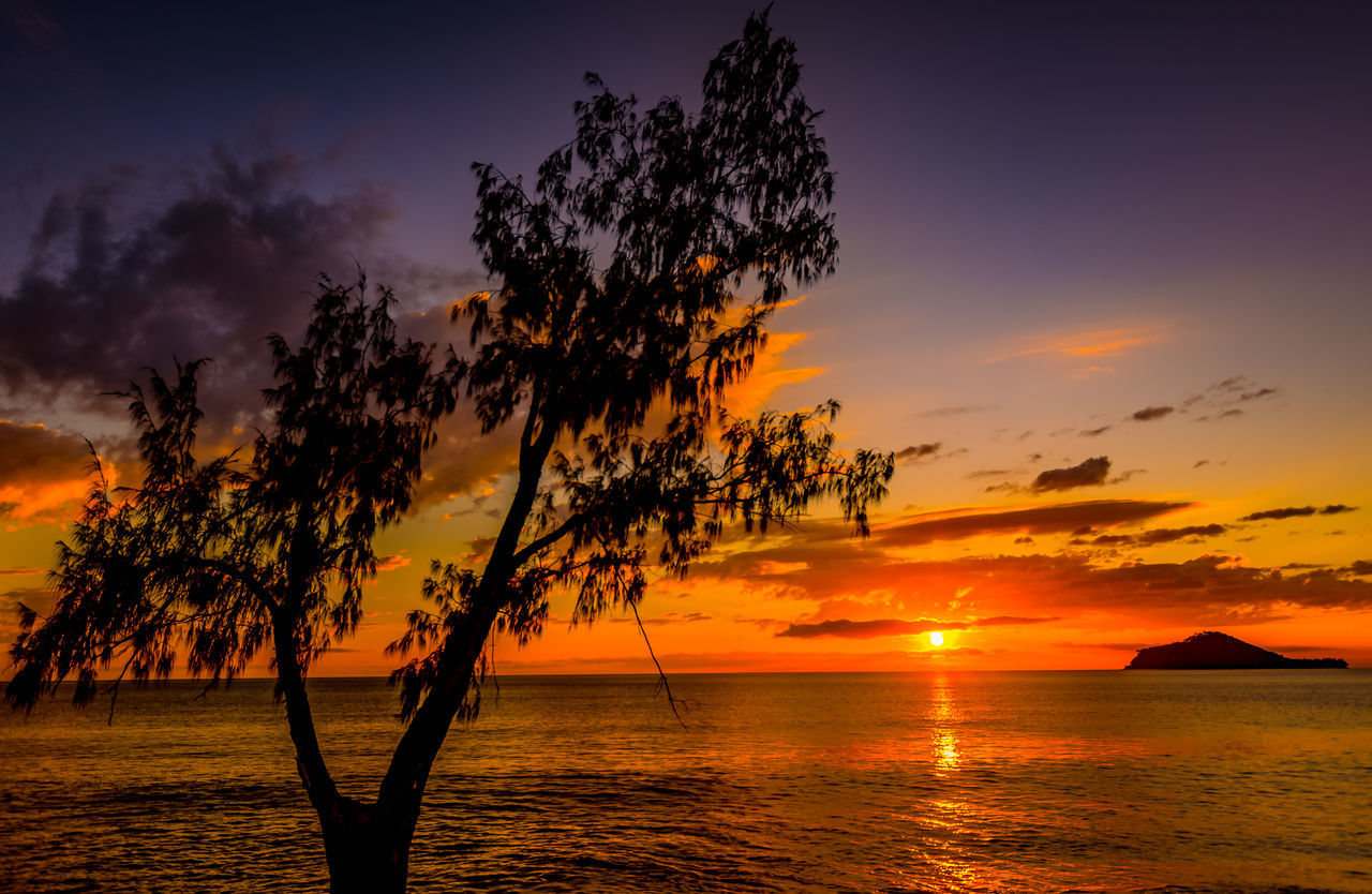 Silhouette Tree Against Calm Sea At Sunset