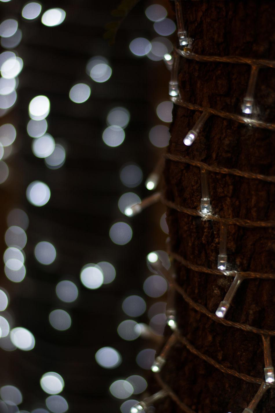 Bokeh Photography Bokeh Lights Bokeheffect Bokeh Bokehlicious Photography Bokeh Balls Bokeh Bubbles Bokeh Background Bokeh On Foreground Bokeh Nature Bokehgraphy Bokeh Night Bokeh Blast Boken Photo Boken Nature Light And Shadows Light In The Darkness Macro Photography Outdoors Full Frame Color Boke