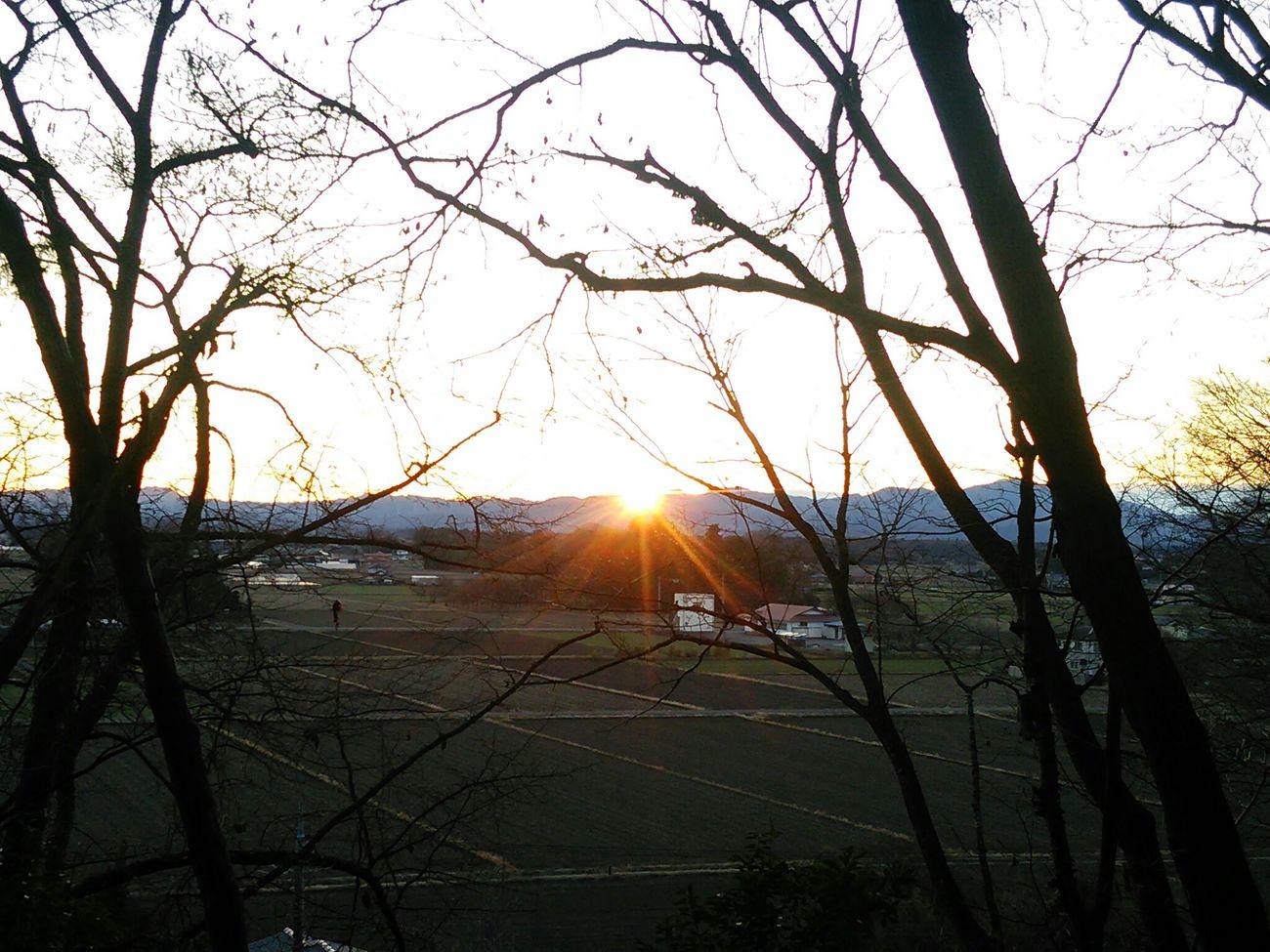 Nature Hello World Sun Sunrise The Sunrise On New Year's Day