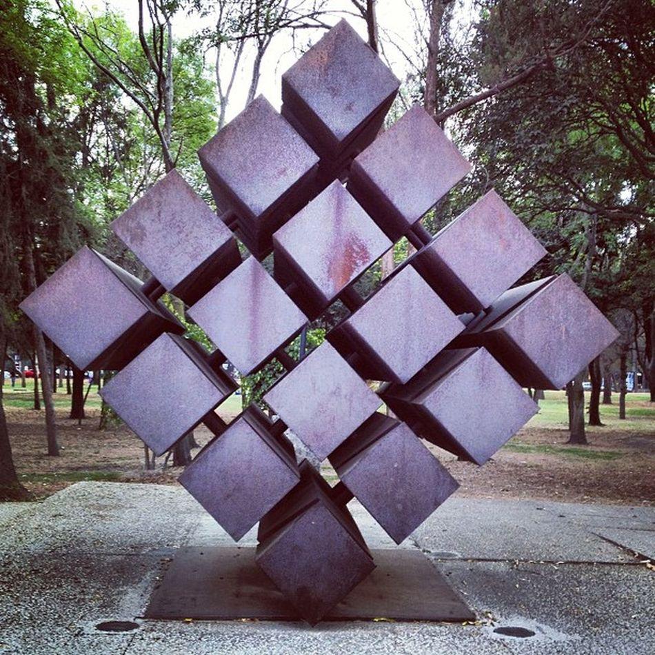 El retorno Squaready Chapultepec Df Igersdf Igersmx Proyectodf Downtown Museo Tamayo Museum